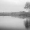 Steinsodden naturreservat  09/05/2013   --- Foto: Jonny Isaksen