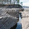 Steinsodden naturreservat 19/04/2014 --- Foto: Jonny Isaksen
