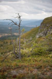 Fåberg Vestfjell   11/09/2015   --- Foto: Jonny Isaksen