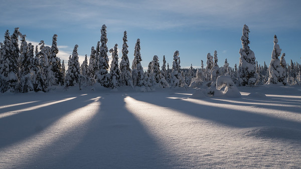 Onsrudvatna  17/01/2016   --- Foto: Jonny Isaksen