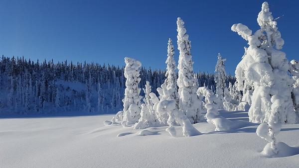 Onsrudvatna, Snertingdal 04/02/2018   --- Foto: Jonny Isaksen