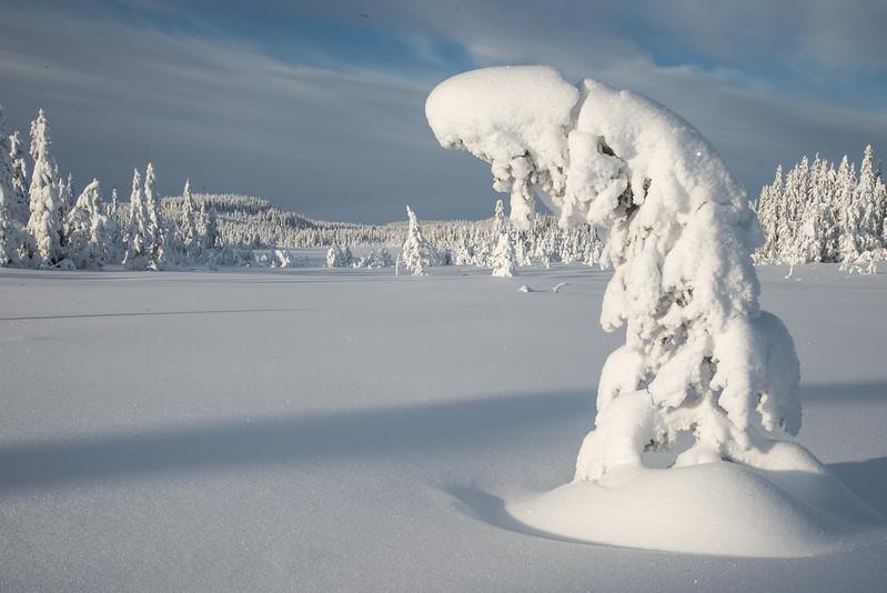Onsrudvatna  25/01/2015   --- Foto: Jonny Isaksen
