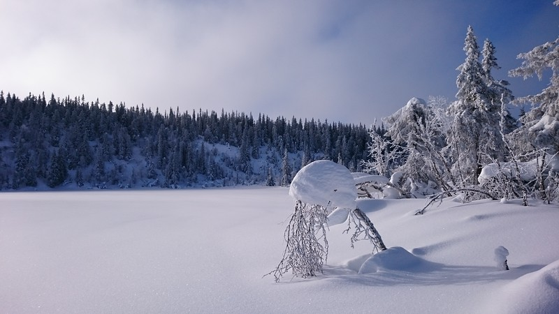 Onsrudvatna   21/02/2016   --- Foto: Jonny Isaksen