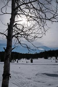 Sjutjernsmyra   20/03/2016   --- Foto: Jonny Isaksen