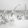 Onsrudvatna 26/01/2014   --- Foto: Jonny Isaksen