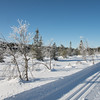 Grindlirunden  14/02/2015   --- Foto: Jonny Isaksen