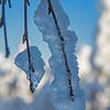 Onsrudvatna  16/01/2016   --- Foto: Jonny Isaksen