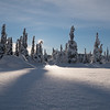 January 17, 2016, 11 AM,  −12 °C