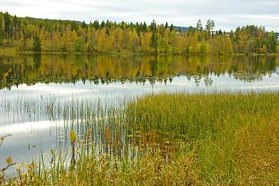 Snertingdal 18/09/2009    --- Foto: Jonny Isaksen