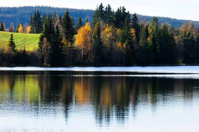 Snertingdal 10/10/10     ----- Foto: Jonny Isaksen