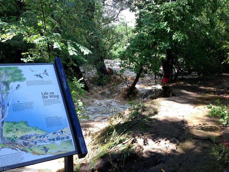 Boulder Creek near Canyon