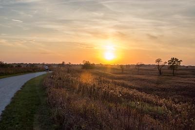 Springbrook Autumn Sunset