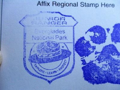 Junior ranger stamp