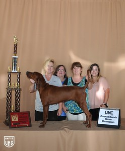 Overall Bench Show Winner - Saturday Grand Champion Female