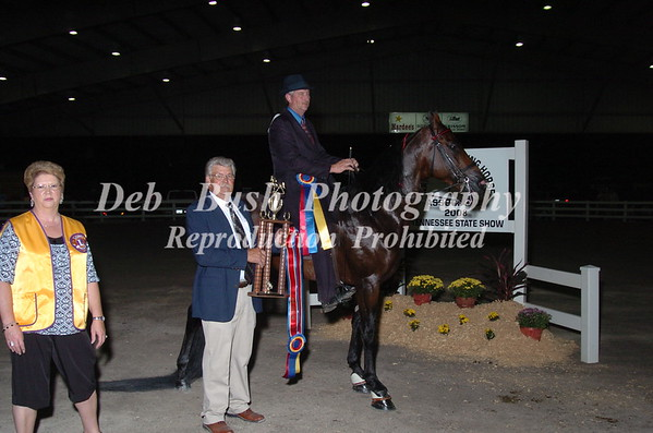 CLASS 39  CHAMPIONSHIP NATIONALBRED