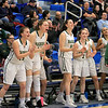 Nashoba Regional High School beat Groton Dunstable Regional High School on Saturday, March 9, 2019 during the Girls Division II Championship game at Worcester State University. NRHS players cheer from the bench. SENTINEL & ENTERPISE/JOHN LOVE