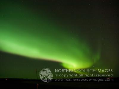 AURORA - NIGHT SKIES