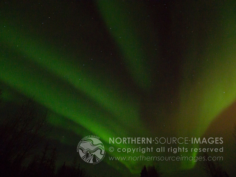 COPYRIGHT NORTHERN SOURCE IMAGES © 2013