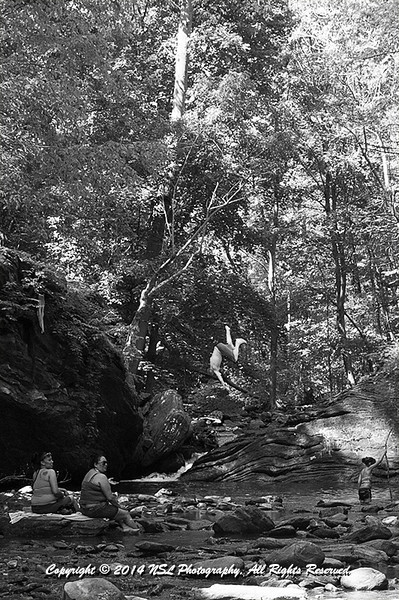 """Jumping into the old swimming hole, the """"Devil's Pool,"""" on Memorial Day Weekend at Wissahickon Creek in Wissahickon Park of Fairmount Park"""