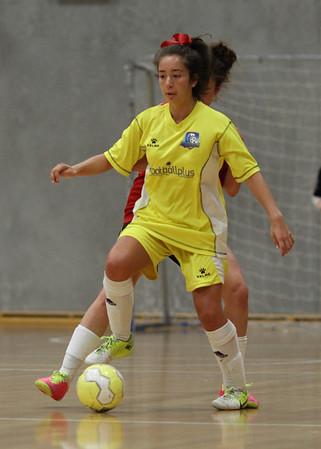 NSW Futsal Assoc Comp 2013