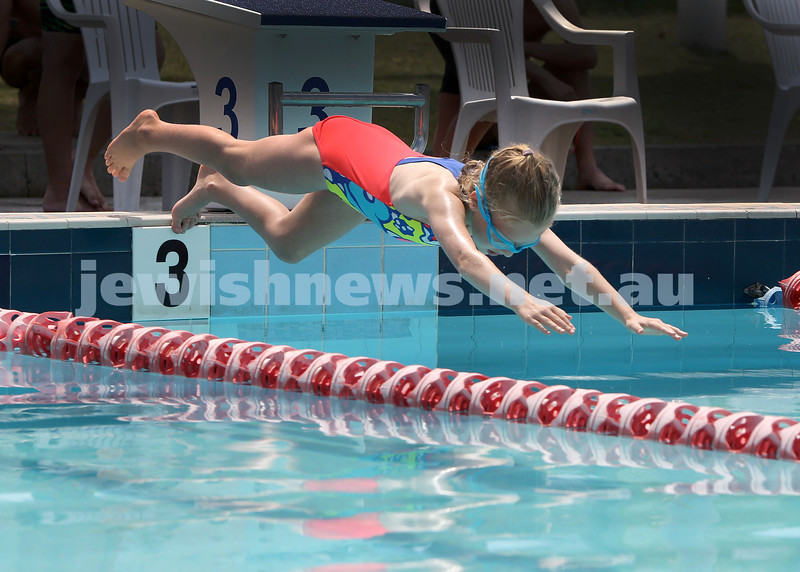 2017 Jewish Swimming Championships at Des Renford Pool. Sanne Nathan dives into the pool for the 25m freestyle. Pic Noel Kessel
