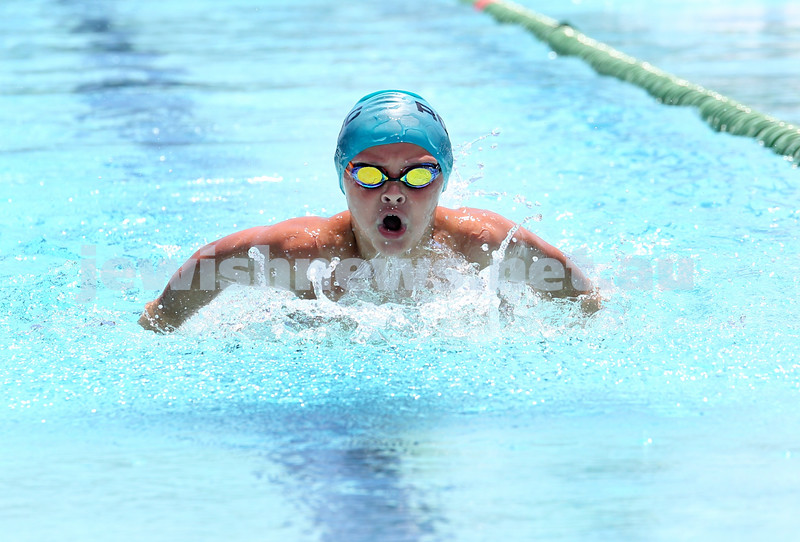 Maccabi Jewish Swimming Championships. Boys 50m Freestyle. Pic Noel Kessel.