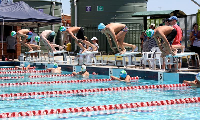 Maccabi Jewish Swimming Championships. 100m open freestyle race. Pic Noel Kessel.