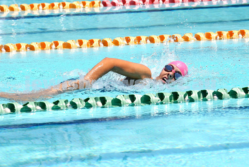 Maccabi Jewish Swimming Championships. Girls 100m Freestyle. Pic Noel Kessel.