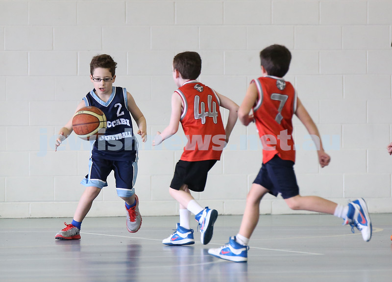 Maccabi vs Bronte Bulls U8 Basketball. Josh Waine with the ball