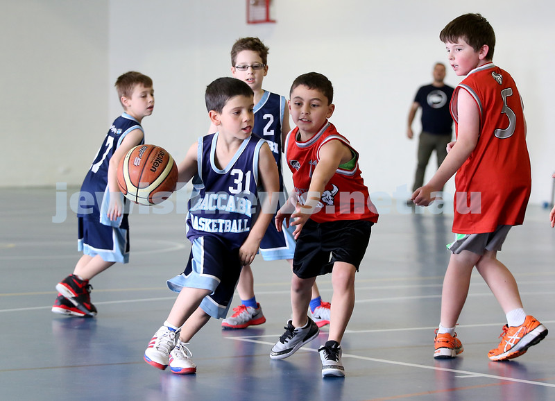 Maccabi vs Bronte Bulls U8 Basketball. Sam Greenberg with the ball.
