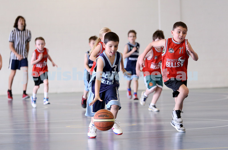 Maccabi vs Bronte Bulls U8 Basketball. Sam Greenberg with the ball