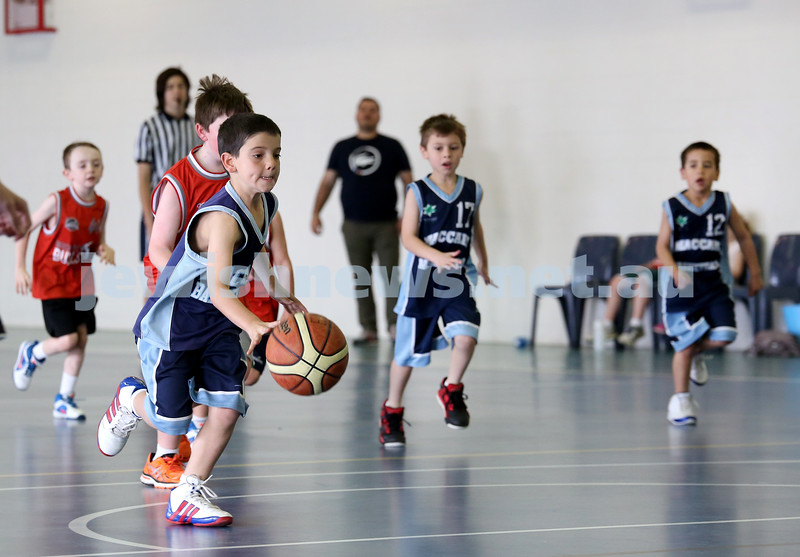 Maccabi vs Bronte Bulls U8 Basketball. Sam Greenberg with the ball and Jesse Geller & Dean Stein run along side.