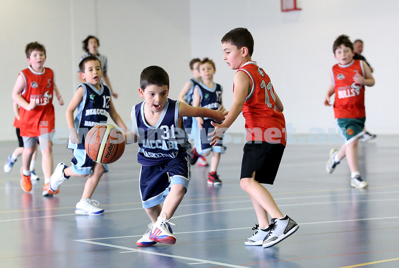 Maccabi vs Bronte Bulls U8 Basketball. Sam Greenberg with the ball, Dean stein behind (L)
