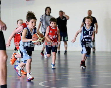 NSW Maccabi Basketball U 8 v Bronte