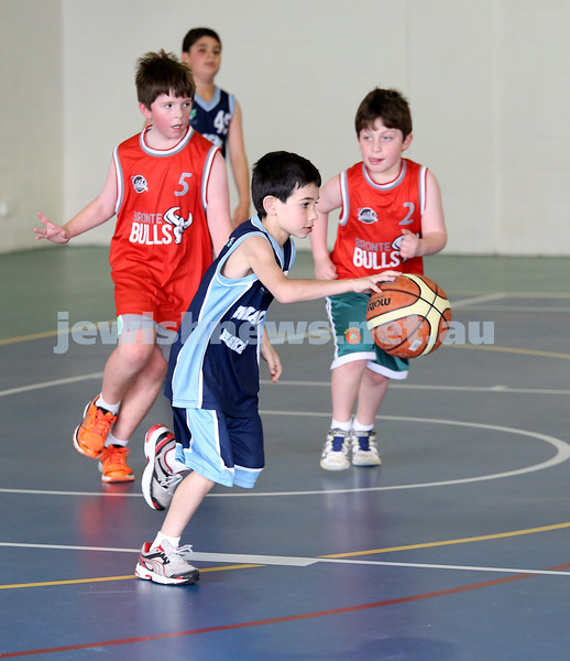 Maccabi vs Bronte Bulls U8 Basketball. Coby Sher with the ball