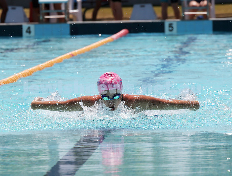 Jewish Swimming Championships held at Des Renford Pool in Maroubra. Isabella Codhlan in the 50m Butterfly.