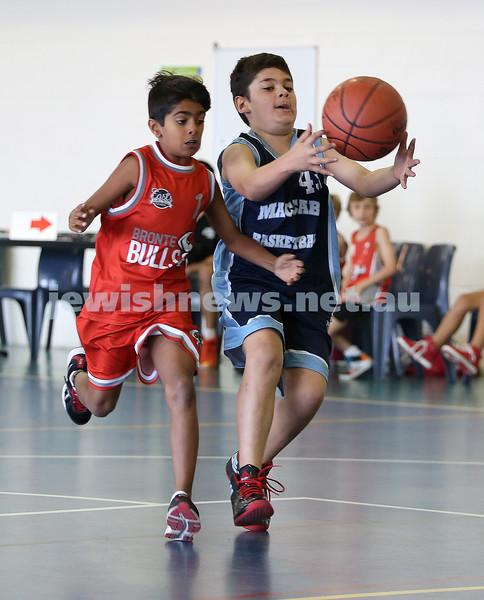 Maccabi Jets under 10 boys basketball team defeated  the Bronte Bulls 18-12 at Waverley. Adiel Goldberg grapples the ball.