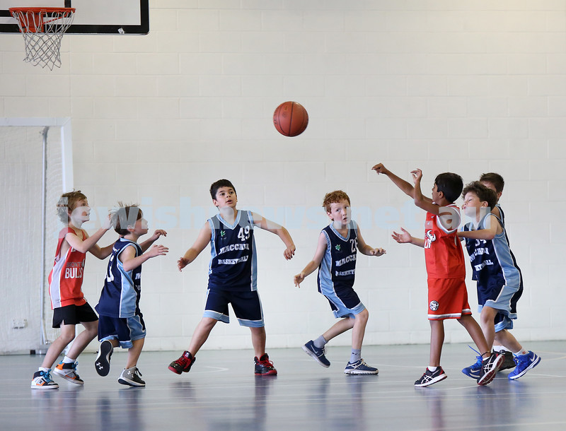 Maccabi Jets under 10 boys basketball team defeated  the Bronte Bulls 18-12 at Waverley. Adiel Goldberg & Levi Jacobs go for a rebound.