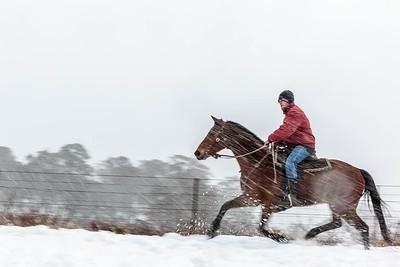 NSW 38 Snow Rider 3