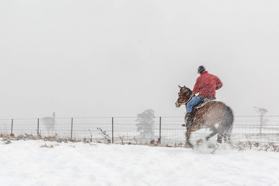 NSW 39 Snow Rider 4