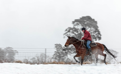 NSW 36 Snow Rider 2