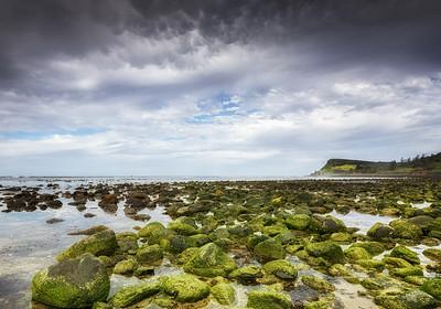 LH 01 Moss on the Rocks
