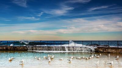 MRT 17  Seagull Bath
