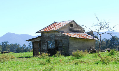 NSW 03  The Delapidated Cottage
