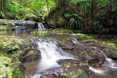 NSW 37  Twin Falls