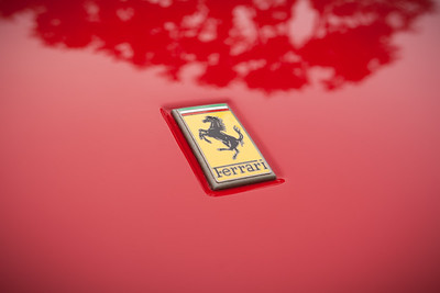 Prancing horse on the hood