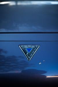 Vector W-8