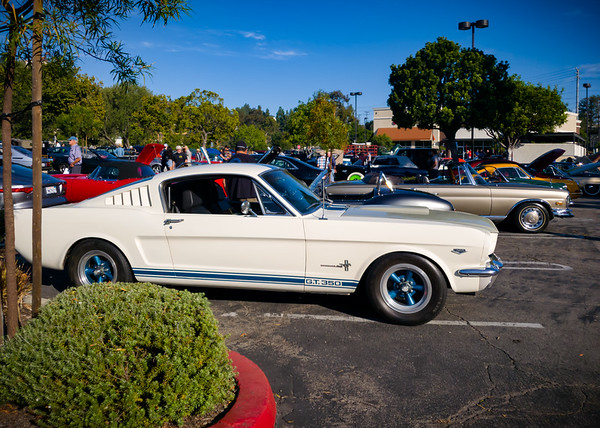 Classic Shelby GT350