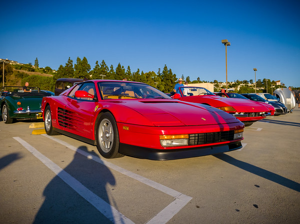 Ferrari Testarossa anchors the red car section (though I suspect these owners would have preferred I left space for more prancing horses)