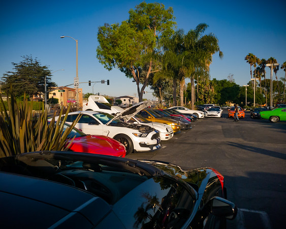 This Ferrari dealer sponsored event has only been around for two years.  It remains quite small compared to the two I regularly frequent in Palos Verdes...